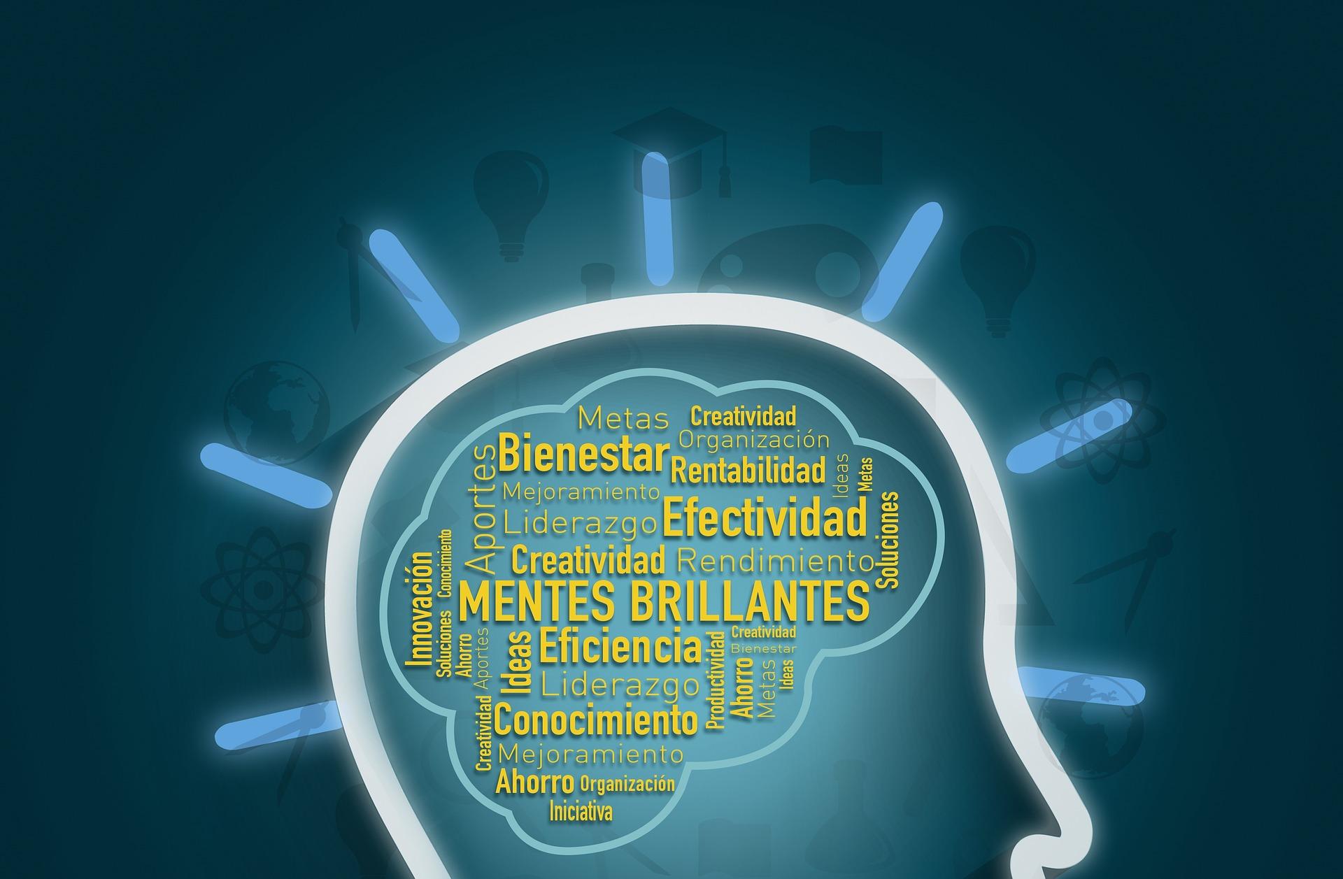 entrepreneur-1324973_1920