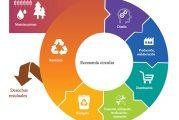 Economía Circular: sostenibilidad y oportunidades para todos